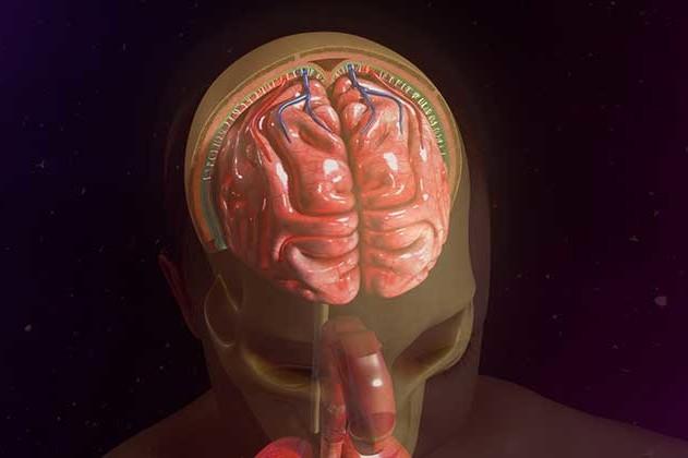 Cerebrospinal-Fluid-Leak-UCI-Head-Neck-1.1-e1534978735819