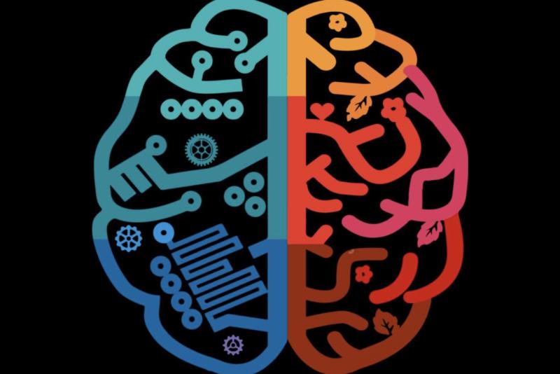 cognitive-science-association-01-800x534